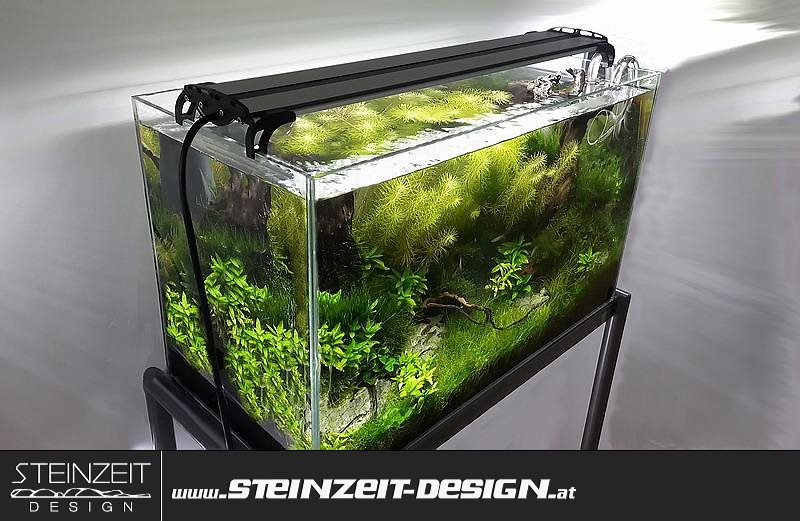 led aquarium beleuchtung barracudas ldx4 2xwei 1xrot 1xblau aufsetzlampe. Black Bedroom Furniture Sets. Home Design Ideas